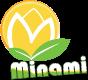 Minami Group