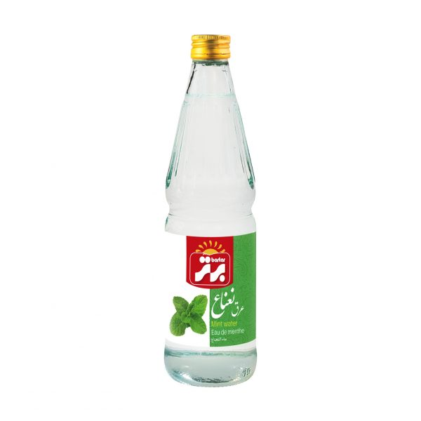 Mint Water 12 x 500 ml